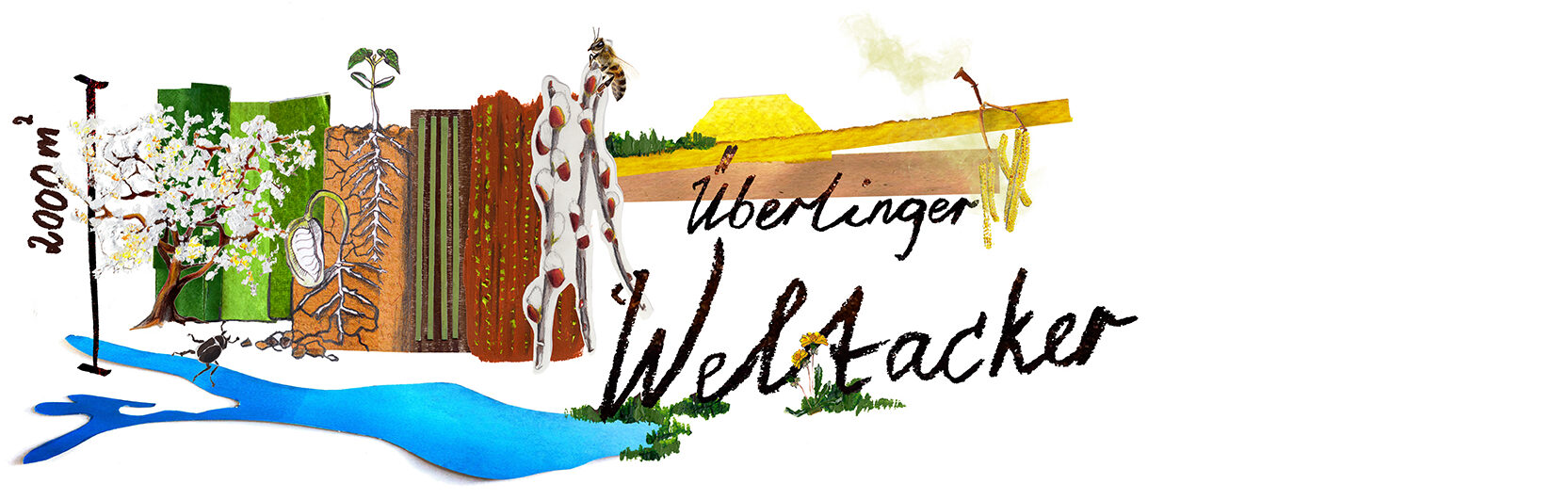ÜBERLINGER WELTACKER